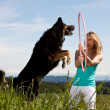 Young blond woman holding hula hoop and dog jumps through — Stock Photo