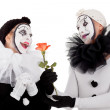 Couple of clowns in love with a flower — Stock Photo