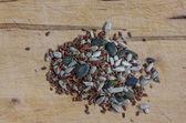Mixed seeds — Stock Photo