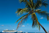 Cruise ships in cayman islands — Stock Photo