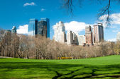 Central park, new york — Stock Photo