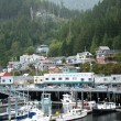 Juneau, Alaska — Stock Photo