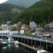 Juneau, Alaska — Stock Photo #14425009