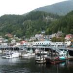 Juneau, Alaska — Stock Photo #14425021