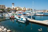 Marina Cabo San Lucas — Zdjęcie stockowe