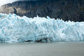 Margerie glacier — Stock Photo