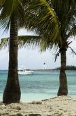 Plaj Virjin Adaları — Stok fotoğraf