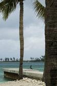 Beach in Virgin Islands — Stock Photo