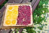 Orange and raspberry tart — Stockfoto