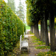 Catherine Palace garden — Stock Photo