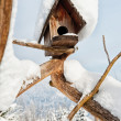 Bird house — Stock Photo #41028481