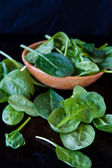 Baby spinach — Stock Photo