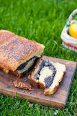 Poppy seeds cake for Easter — Stockfoto