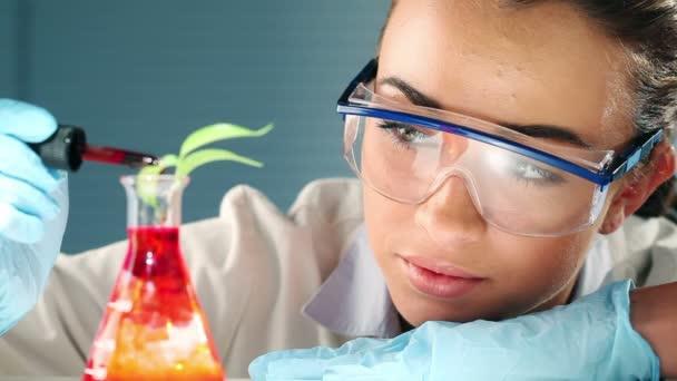 Estudiante de Ciencias muy geek experimentando con agricultura en laboratorio — Vídeo de stock