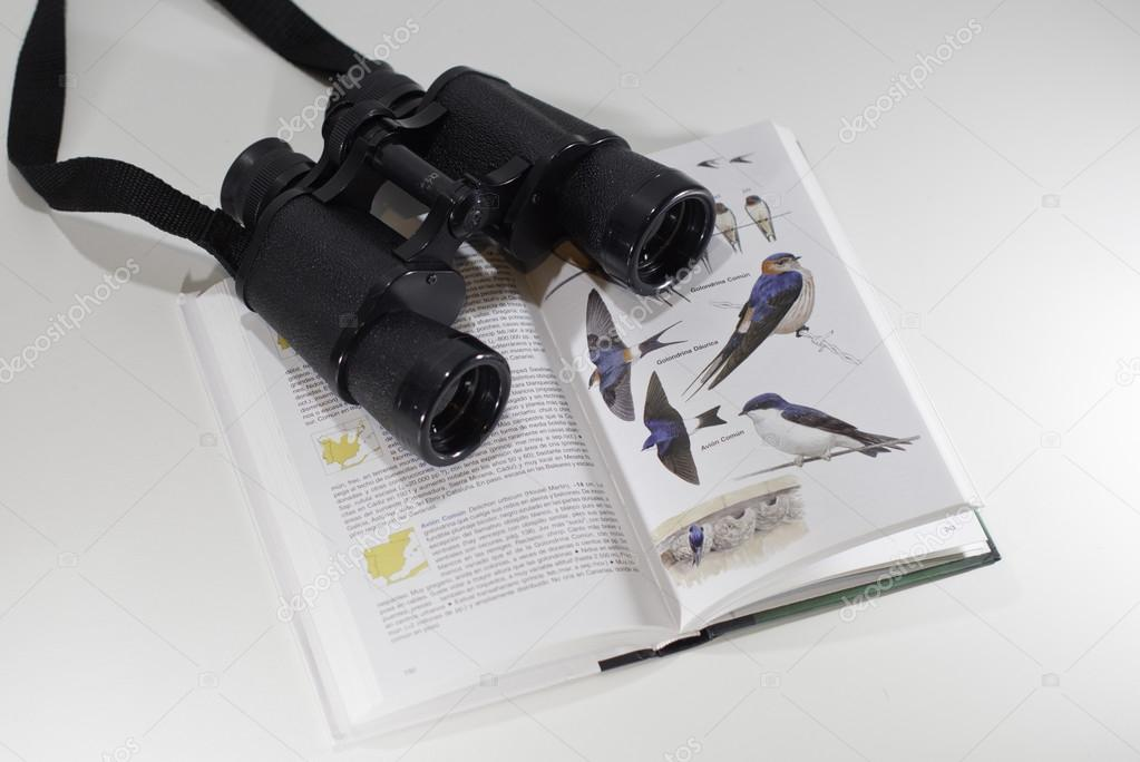 Binoculars over a bird field guide — Stock Photo #13195187