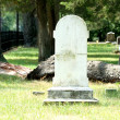 Stock Photo: Blank white marble headstone