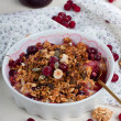 Cranberry, nuts and granola - Stock Photo