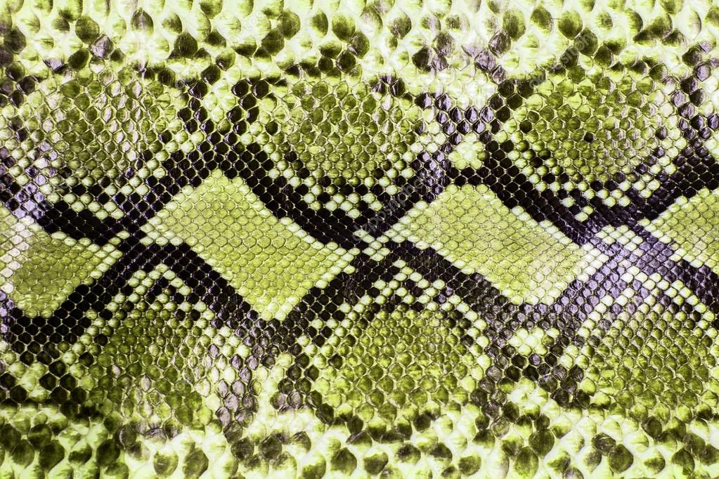 Green Snake Skin Pattern | 1023 x 682 jpeg 225kB