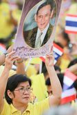 BANGKOK ,THAILAND - DECEMBER 5: Unidentified Hundreds of thousands of people thronged the Royal Plaza to help celebrate HM's 85th birthday; the King is the world's longest-reigning monarch. His — Stock Photo