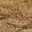 Background bales — Stock Photo