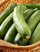 Freshly picked zucchini — Stock Photo