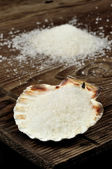 Coarse sea salt in scallop shell — Stock Photo