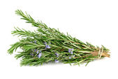 Rosemary isolated on white — Photo