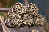 Licorice roots to the market in Italy — Stock Photo