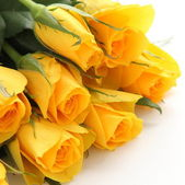 Bouquet of yellow roses on white background — Stock Photo