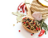 Pepper, olive oil, chinese garlic , herbs and spices — Stock Photo