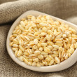 Wheat grains in white ceramic bowl on sackcloth background — Stock Photo