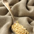 Wheat grains in metal spoon on sackcloth background — Stock Photo
