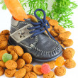 Childrens shoe with carrot voor Sinterklaas and pepernoten — Stock Photo