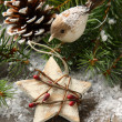 Christmas composition with star and branch of christmas tree — Stock Photo #32286547