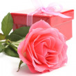 Pink rose and red gift box over white — Stock Photo #43037337
