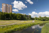 Sunny day on the river — Stock Photo