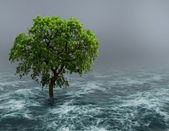 Tree in water. — Stock Photo