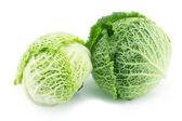 Cabbage — Foto de Stock