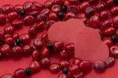 Heart, coral necklace — Stock Photo