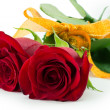 Red Rose — Stock Photo #21283455