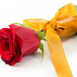Red Rose — Stock Photo #21283499