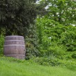 Old oak barrel — Stock Photo
