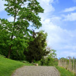 Path into the distance, the park — Stock Photo #26213243
