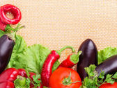 Pepper, eggplant, hot peppers — Stock Photo