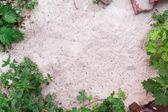 Vestígios de areia — Foto Stock