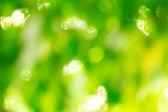 Green background bokeh — Stock Photo