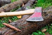 Ax lying on log — Foto de Stock