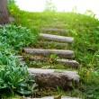 Stone stairway grass — Stock Photo #44133363