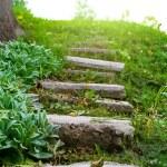 Stone stairway grass — Stock Photo #44133363