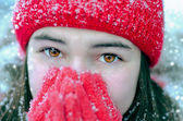 Cold winter — Stock Photo